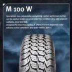 Curatenie  - Anvelope autoturisme - Anvelopa M 100 W